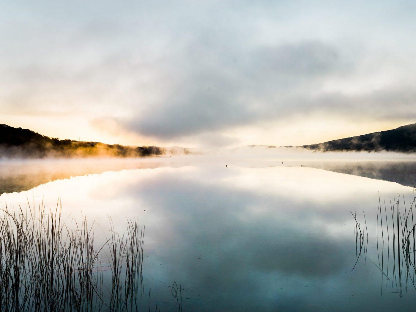 Naturheilkunde-für-die-Seele-Andree-Reuter
